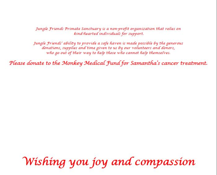 Holiday card inside