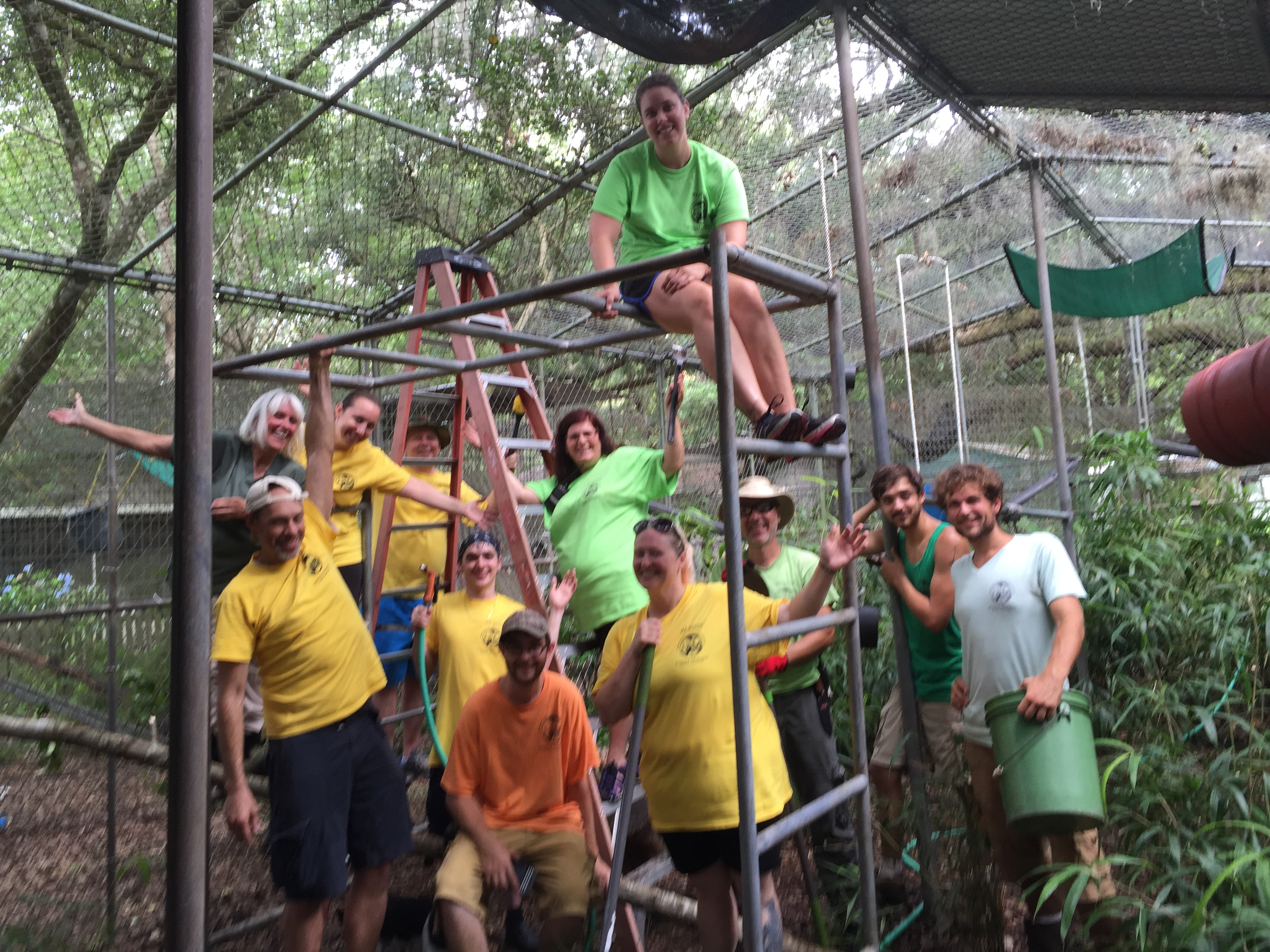 Volunteer Group at Jungle Friends